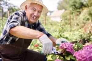 Benefits of Regenerating Bone for Dental Implants